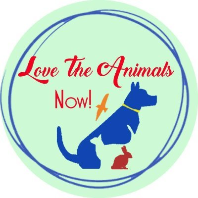 Love The Animals Now