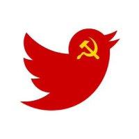 Pro India News ( @PlayDFC ) Twitter Profile