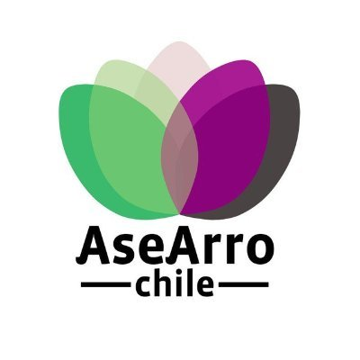 Asexuales & Arromántiques Chile (@AseArroChile) | Twitter