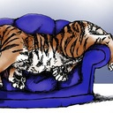 The Couching Tiger (@22yds) Twitter