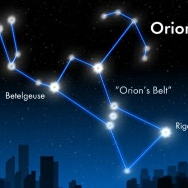 Orion Profile Image