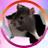 taurus king | patron fiend of rats