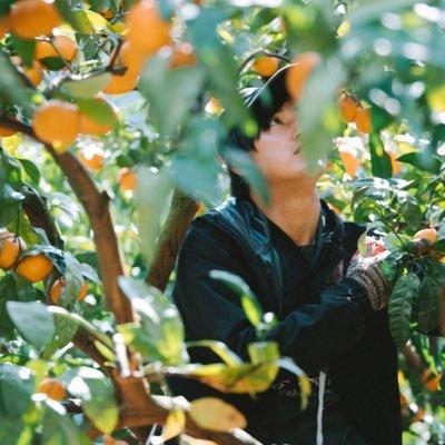 井上 信太郎|みかん農家🍊 @zenbee7daime