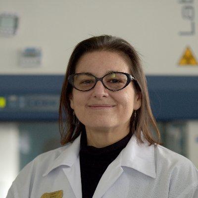 Eugenia corrales aguilar dissertation sample cover letter it director