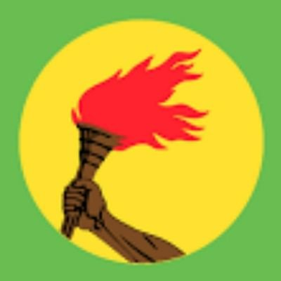 Shegue Molambi (@ShegueM) Twitter profile photo