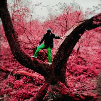 Sam, 27. Morrissey, vegetables, vinyl etc. Feckless photoshopping faker.