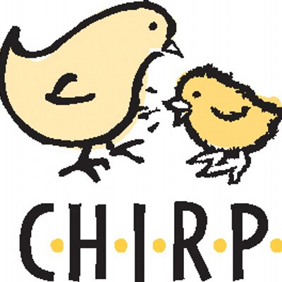 chirping the nhl i chirp nhl twitter