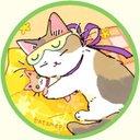 cats_hazi
