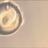 takashi ikegamiのアイコン