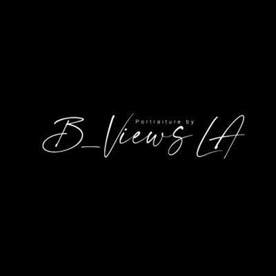 BViewsla