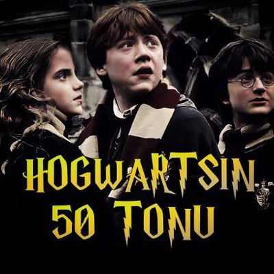 HOGWARTS'IN SAKİNLERİ 🐍⚡ (@hogwartsn50tonu )