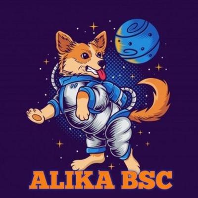 ALIKA-(-ALIKA-)-token-logo