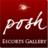 Posh Escorts Gallery