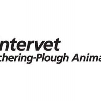 Intervet (@Intervet12) | Twitter