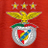 @slbenfica