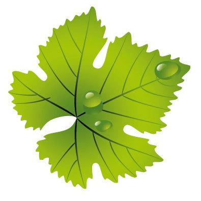 Salon du vin salonduvin twitter - Salon du vin versailles ...