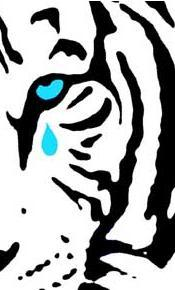 Crying Tiger Mark Social Profile