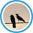 Twitterアイコン画像