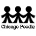 Chicago Poodle Social Profile