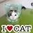 インスタにも載せたけど 猫柄の豆皿をちょっとずつセリアで買うとるんじゃ…可愛ええのう(爺)