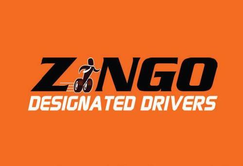 ZINGO DESIGNATED WINDOWS 8 X64 DRIVER DOWNLOAD