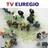 TV-Euregio