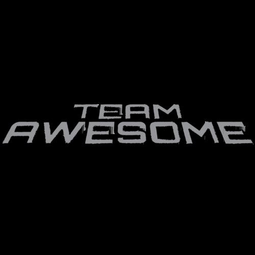 Amazing Team: Team Awesome (@TeamAwesomeNL)