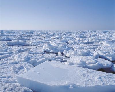 「流氷 写真」の画像検索結果