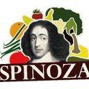 Spinoza, Leeuwarden