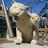 awebb25's avatar