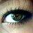 Diane Breedveld twitter profile