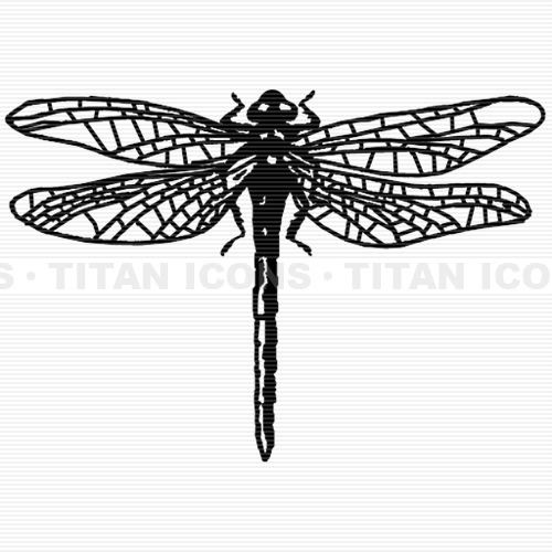Line Drawing Dragonfly : Melissa magestro mmagestro twitter