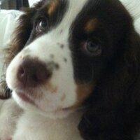 Brody n Ella