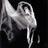 BalletstudioAnk