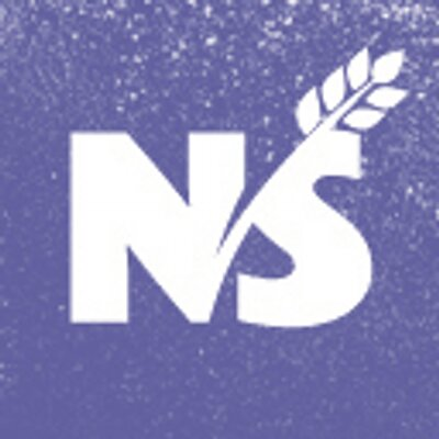 Ns twitter icon 400x400