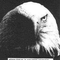EAGLE of APOC. 8:13