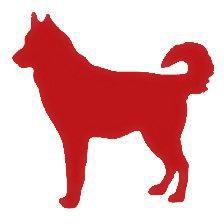 Image result for red dog