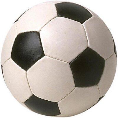 Wiziwig Soccer