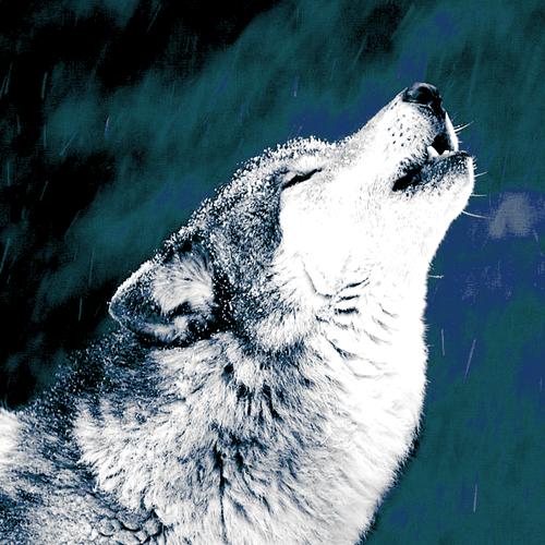 イラスト 24時間 イラスト : Norse Wolf God
