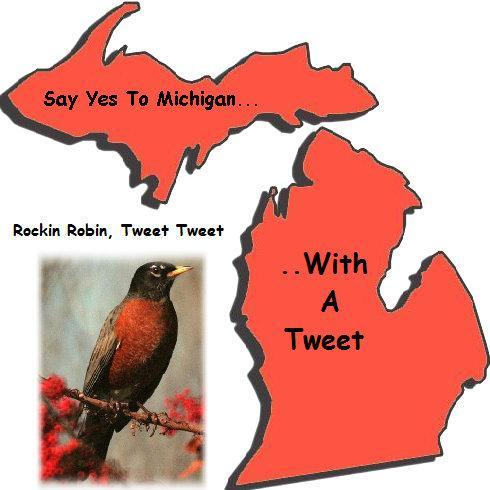 Tweet Michigan Social Profile
