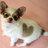 Kimberly Cates - Kimberly_Cates