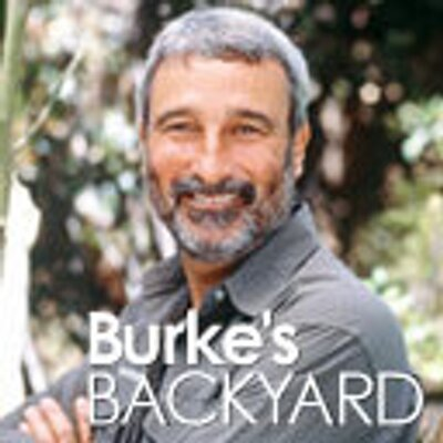 "Burke Backyard burke's backyard on twitter: ""burke's backyard's don burke"