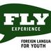 Twitter Profile image of @flyexperience1
