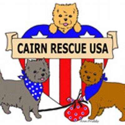 Cairn Rescue-USA (@CairnRescueUSA)   Twitter