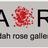 Adah Rose Bitterbaum