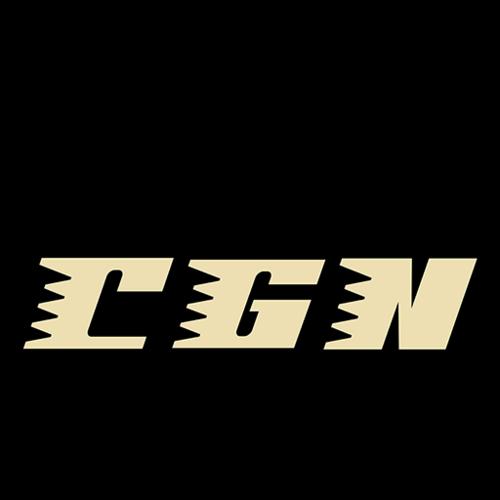 cgnwebperf