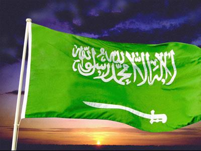 محمد العداله