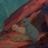 Lil_Wombat