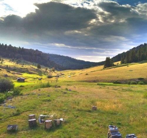 Entech Inc   Sheridan Wyoming