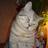 @v_dombrovsky Profile picture